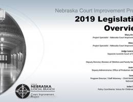 CIP 2019 Legislative Overview